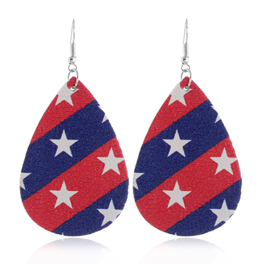Color Block Starry Print American Flag Print Earring Set